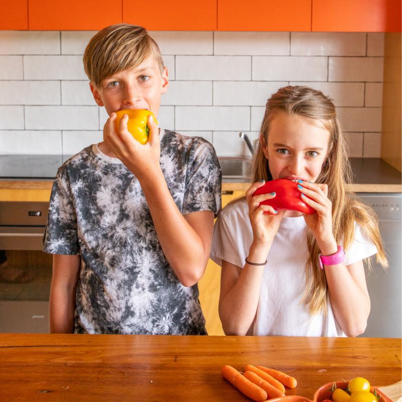 Kids Nutrition Audit Image